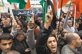 因小伙自焚引起的突尼斯的茉莉花革命