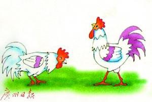 """鸡年说鸡:""""呆若木鸡""""最初是褒义"""