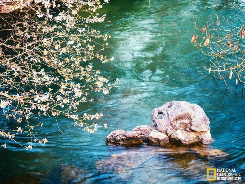 西湖是一首诗 一幅天然图画