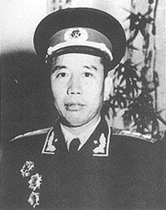 哪些原因毛泽东将繁重的任务交给王震?