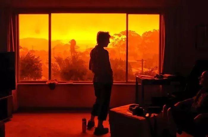 为什么澳大利亚灭不掉山火?答案都在这里了