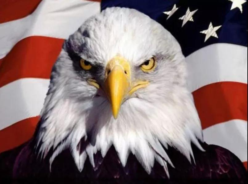 美国什么时候伟大过?