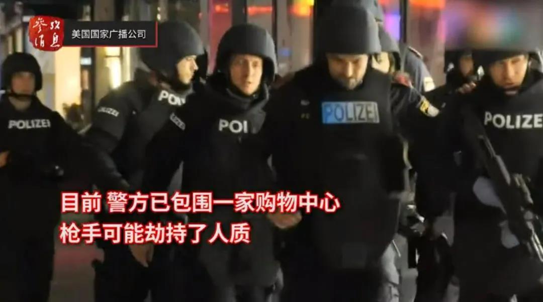 维也纳恐袭案细节曝光!多名全副武装袭击者仍在逃