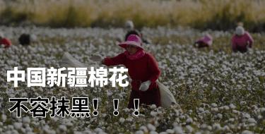 中国新疆棉花不容抹黑