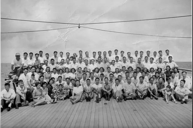 1950年,为什么这群海外的年轻人一定要回家?